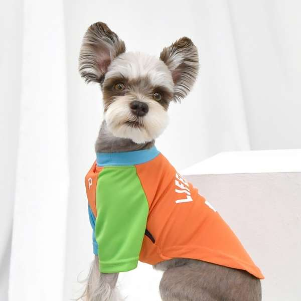 Puppia Shirt Rescuer - Orange