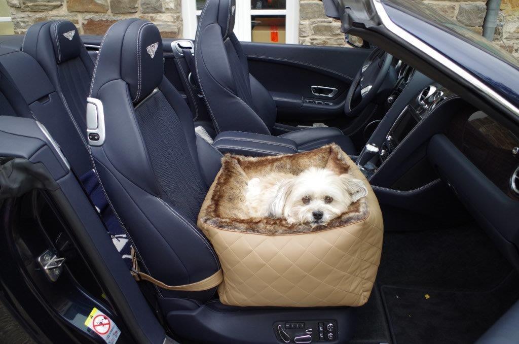 Hunde-Autositz-First-Class-Camel