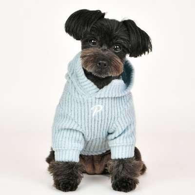 PUPPIA Sweater Declan - Hellblau