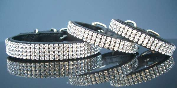 Hundehalsband Hollywood Petit