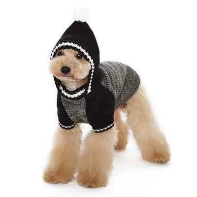 Hunde-Sweater Diego