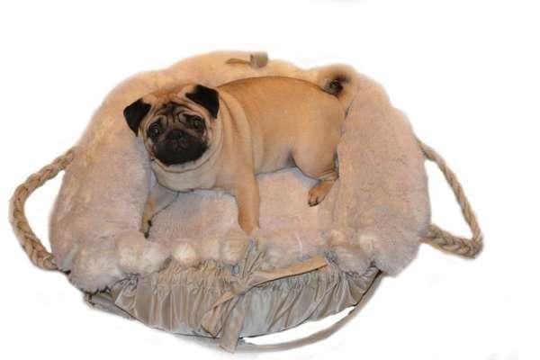 Designer Hundetasche BIG LOVE 3 in 1 - Beige