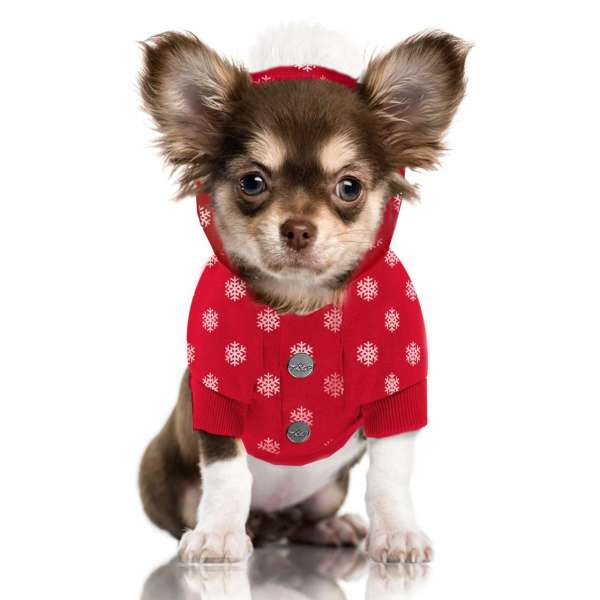 Hunde-Sweater Flake - Limited Edition