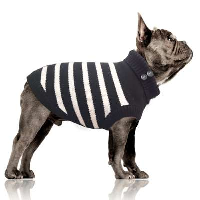 Hundepullover Gwendal - Marine Bully / Mops
