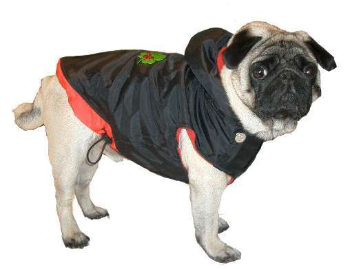 Hundemantel Lucky Dog 1