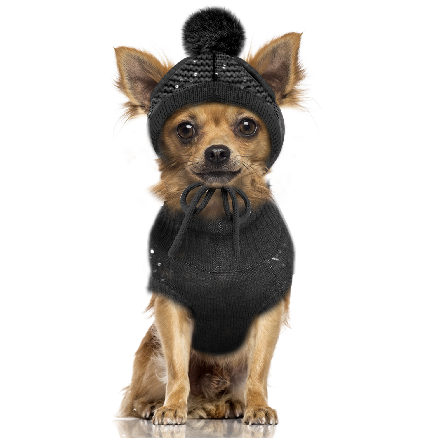 Milk-and-Pepper-Hundepullover-Cassiopee-mit-Hund59d3a2506869c