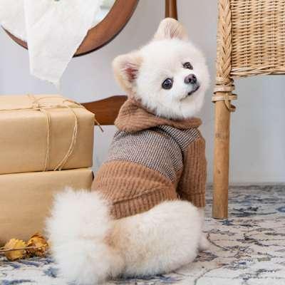 Hunde-Sweater Declan - Camel