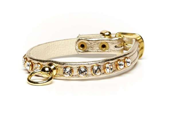 Hundehalsband Little Paris - Gold