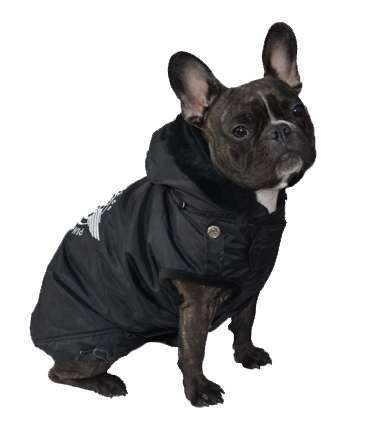 Französich Bulldog Hundemantel Route 66 Black Winter Edition