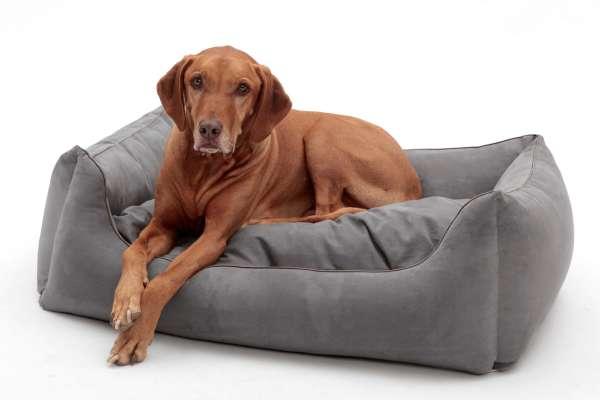 Hundebett ALCANTARA - Anthrazit