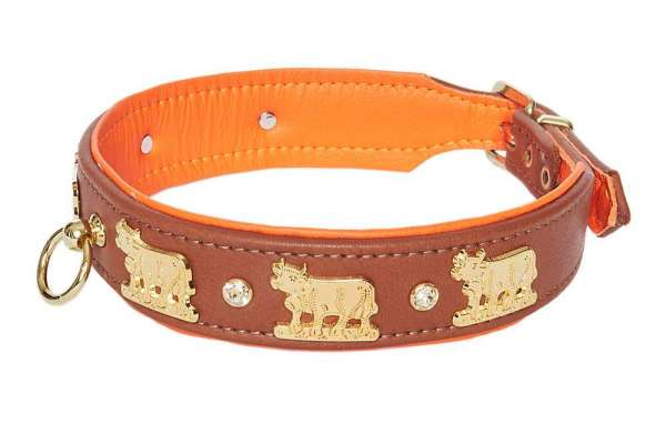 Hundehalsband Lucky Muh - Rehbraun-Orange