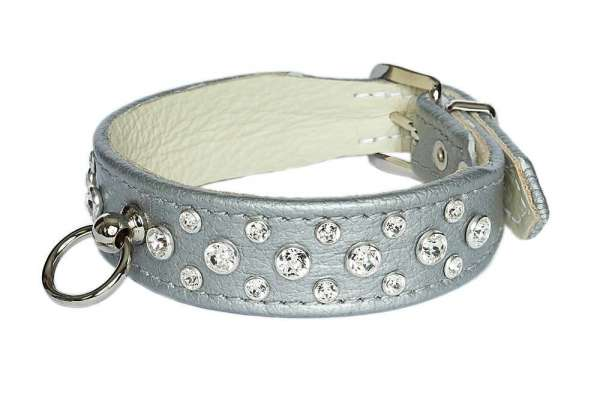 Hundehalsband Miami - Silver-Clear