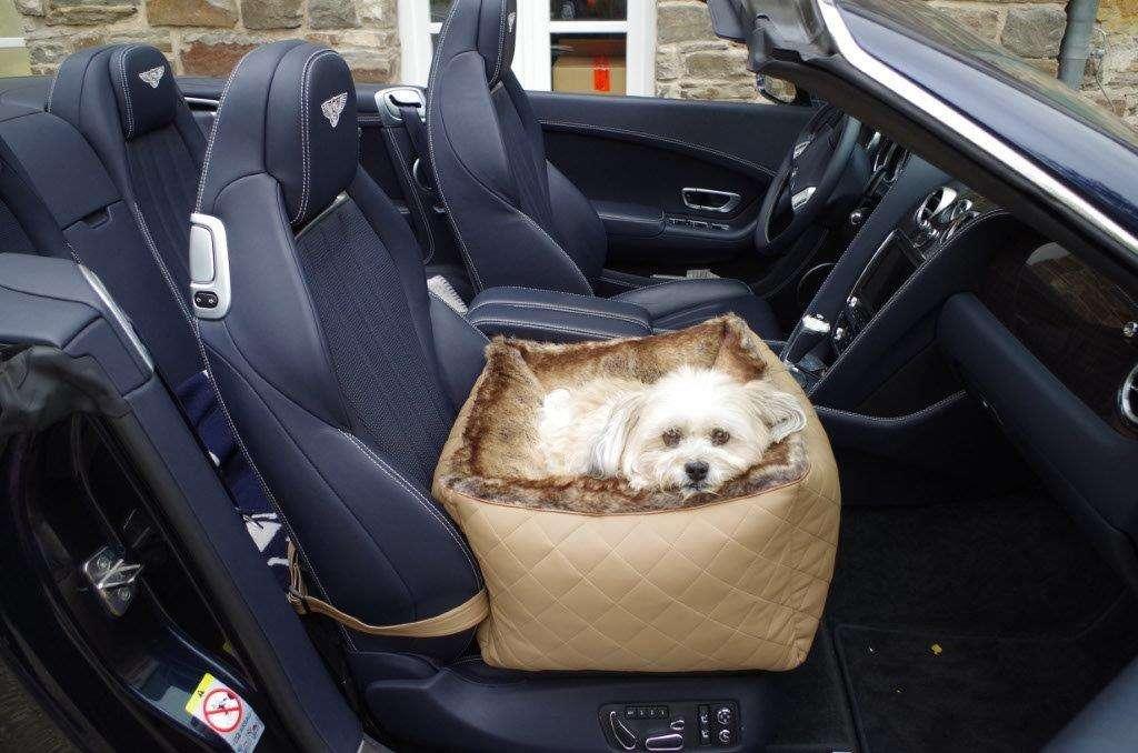 designer autositz f r hunde hunde autositz von tg l. Black Bedroom Furniture Sets. Home Design Ideas