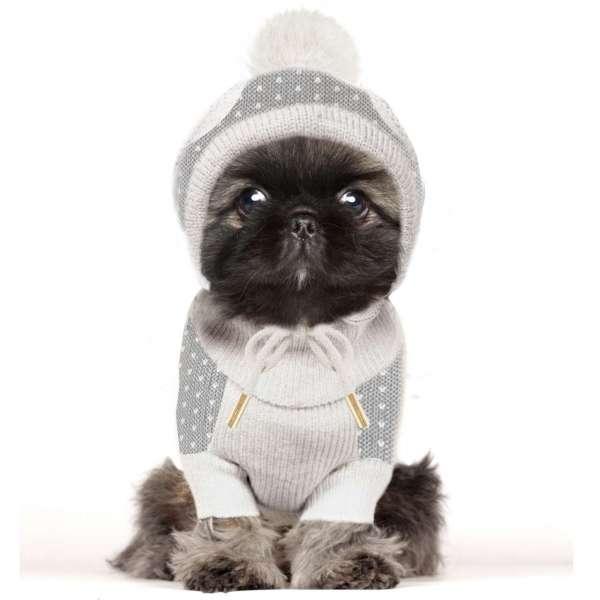 Milk & Pepper Hundepullover Arctic