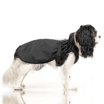 Hunde Regenmantel Hamilton