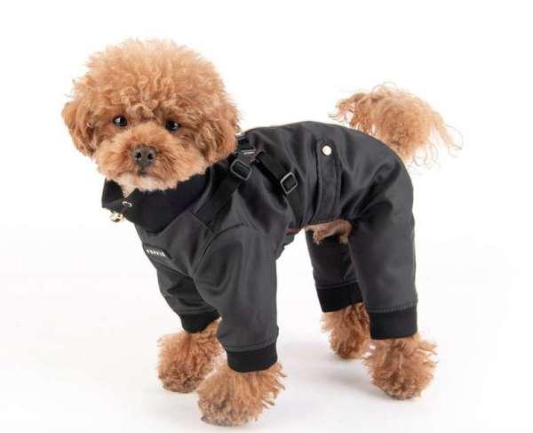 Hunde-Overall Outdoor Garnet - Black mit intergriertem Hundegeschirr