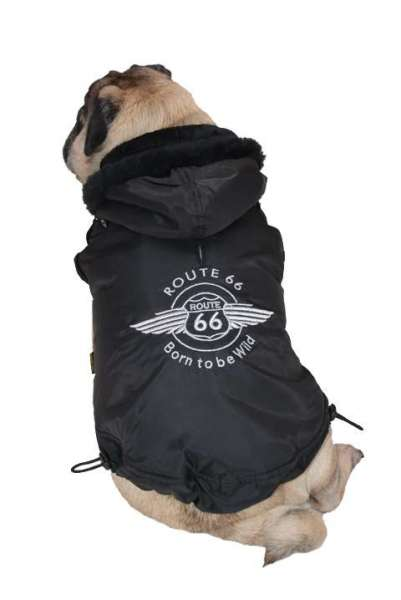 Hundemantel Route 66 Black Winter Edition