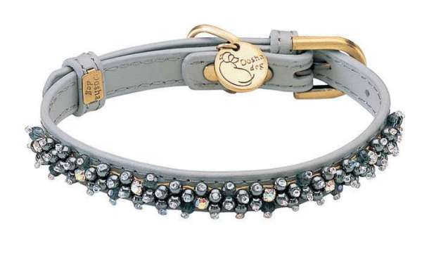 Hundehalsband Magic Pearls