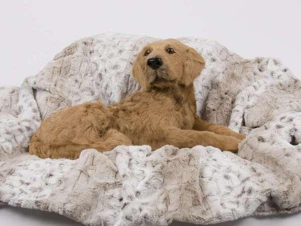 Designer Hundedecke Super Soft - Snow Leopard