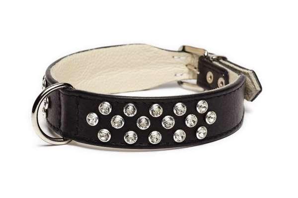 Hundehalsband Melrose Avenue - Black-Clear