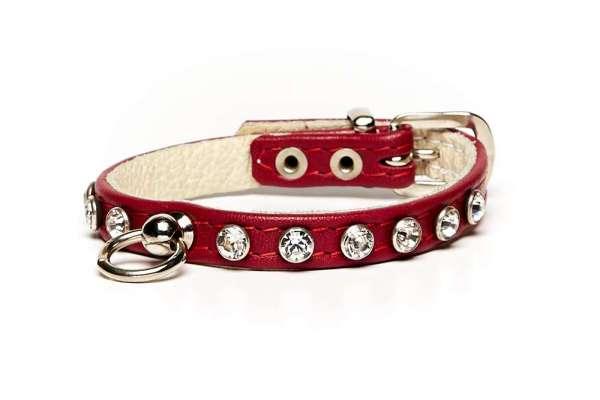 Hundehalsband Little Paris - Rot
