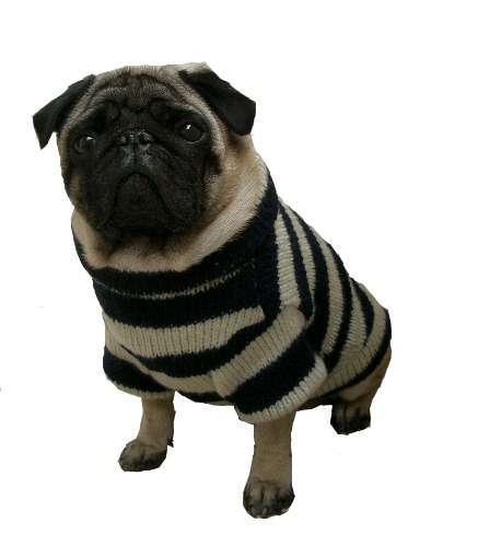 Hundepullover Kampen Navy-Crema