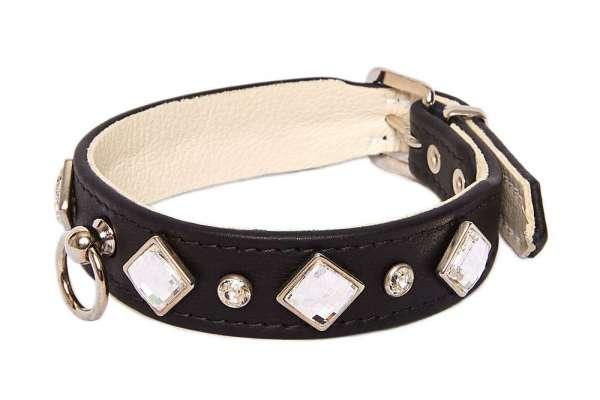 Hundehalsband Mirage - Black-Clear