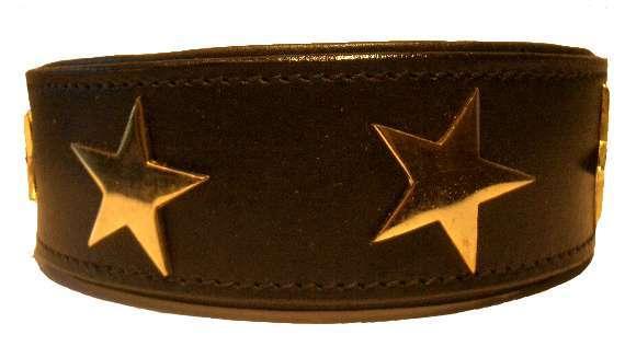 Hundehalsband BE A STAR