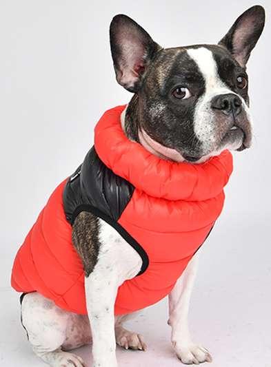 Hundejacke Ultralight 2 Colorway Gilet - Rot