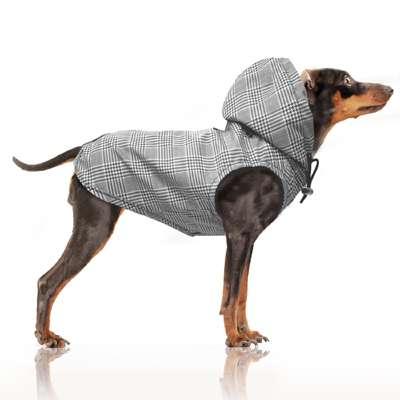 Hunde-Regenmantel Gregor