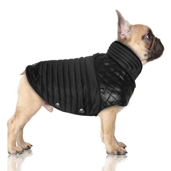 Französisch Bulldog Mantel Lemmy - Black