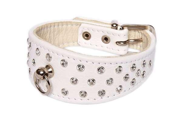Hundehalsband 5th Avenue - Snowwhite-Silver