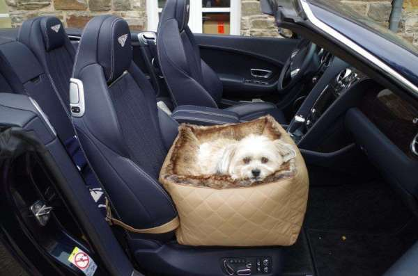 Hunde-Autositz First Class Deluxe - Camel-Chinchilla