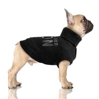 Hundepullover ICON -Black Bully / Mops
