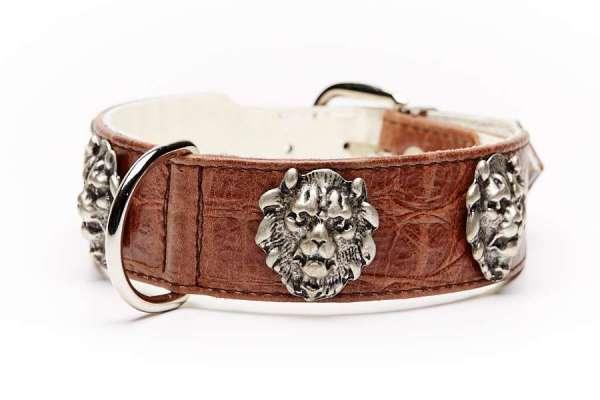 Hundehalsband Lionheart