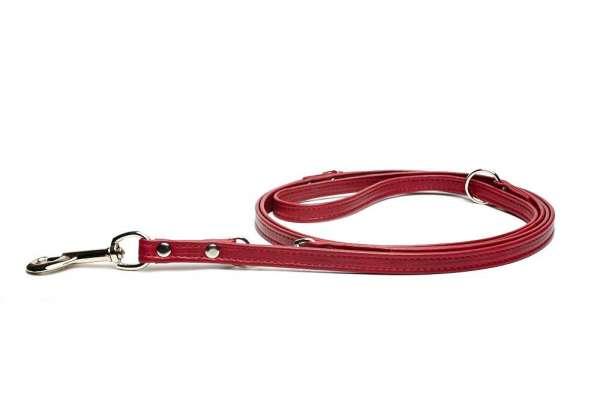 Verstellbare Hundeleine Rot
