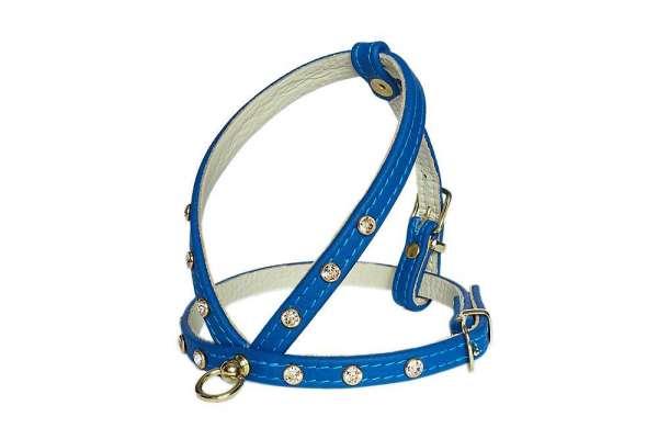 Hundegeschirr Shiny Petit - Cobalt Blue