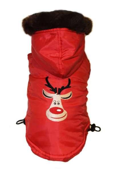 Mopsmantel Crazy Rudolph
