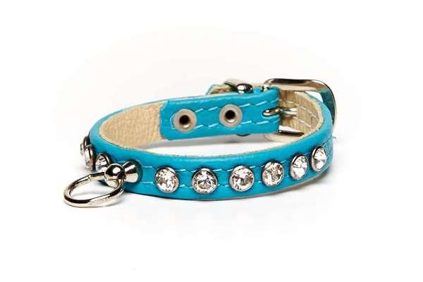 Hundehalsband Little Paris - Türkis