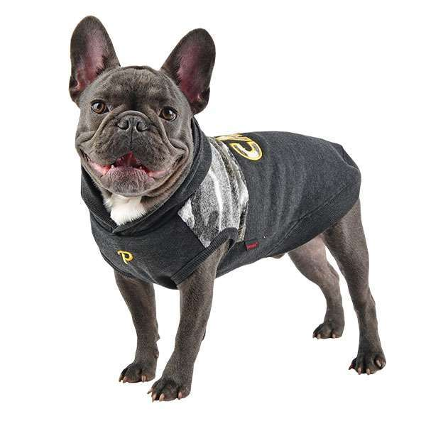 Hunde-Sweater CAMP - Grey