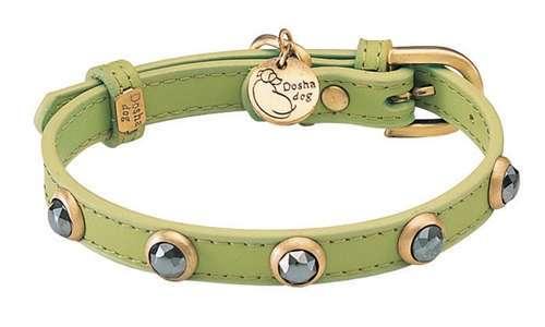 Hundehalsband Malibu Petit Applegreen